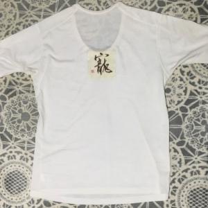 半袖シャツ。