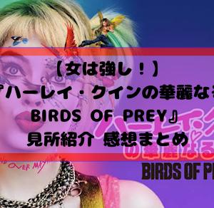 【女は強し!】映画『ハーレイ・クインの華麗なる覚醒BIRDS OF PREY』見所紹介 感想まとめ|アメリカンヒーロー映画の新たな試みとは?