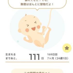 妊娠7カ月に入りました★おうちピクニック