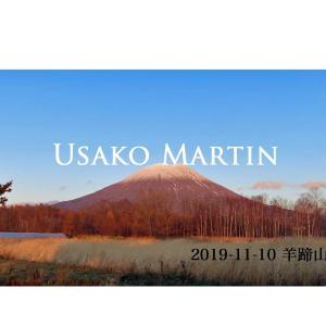 【羊蹄山】2019-11-10 山の様子