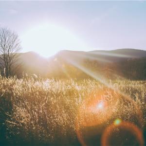 早起きをすればその日は素晴らしい日に。