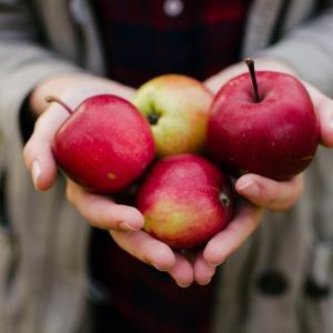 《簡単》りんごとカスタードのタルトのレシピ《冬に食べたいスイーツ》