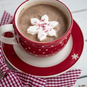 《牛乳以外でもおいしく》いろいろな「ココアの飲み方」をまとめてみた《ホットでもアイスでも》