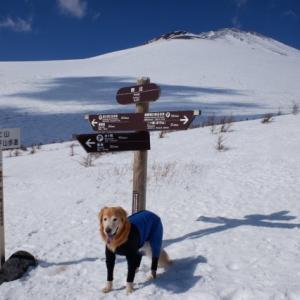 雪遊び♪③ 双子山を登る