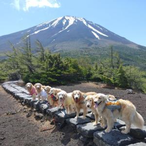 みんなで富士山トレッキング① 奥庭自然公園