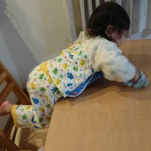 嬉しい!?掃除の助っ人はまだ1歳(No.059)