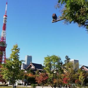東京:芝公園