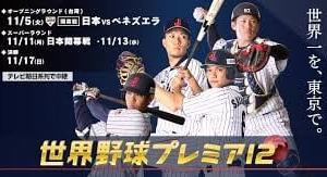 侍ジャパン決勝進出だってよ~