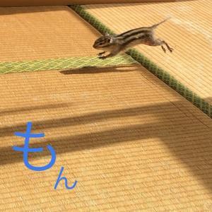 JUMP×3