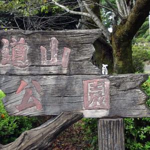 水道山公園 桐生市眺望【追記のお知らせあり】