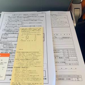 日本へ一時帰国 仁川から成田 ( 再入国許可書 )