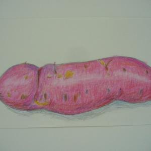 「サツマイモ」の色鉛筆画&「おおきなおおきなおいも」の絵本など