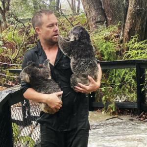 哀 豪 森林火災の脅威が一転ずぶぬれ 洪水の危機