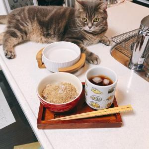 【ダイエット】七号食2、3、4日目記録。
