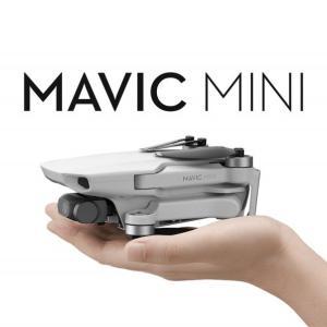 【ドローン】Mavic mini レビュー(遅くても気にしない)