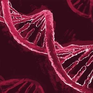 幻 の 遺伝子治療