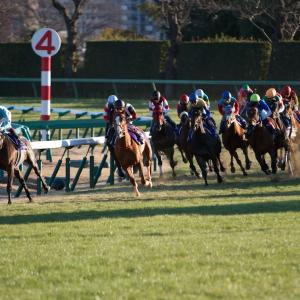 日経賞【G2】の高適性馬ランキング(2020.03.28/中山芝2,500m)