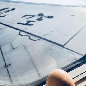 飛行機(国際線)の中にゆで卵を持ち込んで食べてみたら…