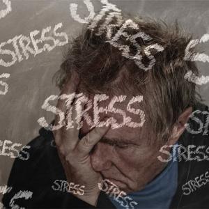 ストレスはなくならない?!【ストレスとの付き合い方を紹介します】