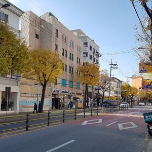 韓国ももうすぐ冬!冷え込みがきつくなってきています