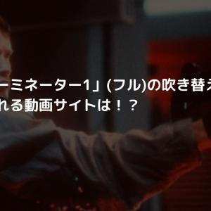 映画「ターミネーター1」(フル)の吹き替え・字幕を無料で見れる動画サイトは!?