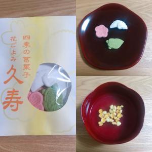 【和菓子】神社でいただいた葛湯のお菓子