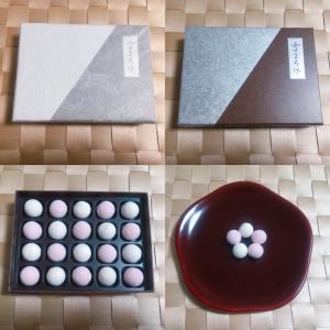 【和菓子】御菓子司 塩芳軒「雪まろげ」(京都府京都市)