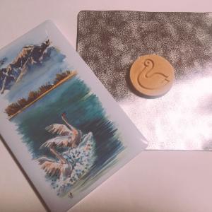 【和菓子】開運堂「白鳥の湖」(長野県)