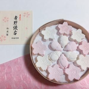 【和菓子】吉野 松屋本店「吉野葛製桜菓子 吉野懐古」(奈良県)