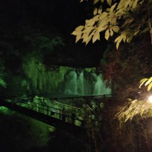 【関之尾滝ライトアップ】幻想的な滝がそこに 8月29日まで【都城の観光スポット】
