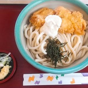 白山市・吉本製麺嵐さんで期間限定とり天タルタルうどん+かつ丼