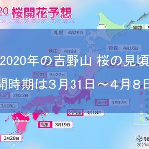 姫路城 桜|2020年の姫路城 桜の見頃・開花時期は?