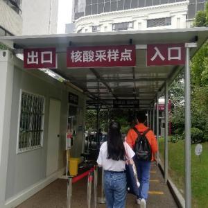 また上海でPCR検査を受けてきた