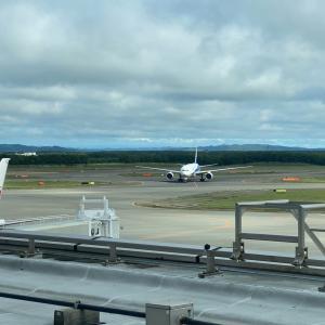新千歳空港直結!飛行機が見える「エアターミナルホテル」宿泊記