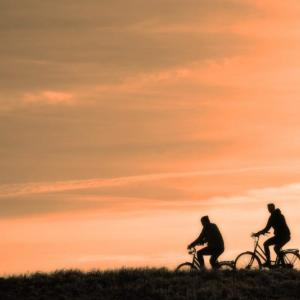 自転車に優劣そんあなものは存在するのか? by40代から趣味で始める初心者おっさんのロードバイク