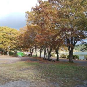 秋キャンプはメリットしかない!?秋キャンの楽しみ方、過ごし方注意点をご紹介します!!
