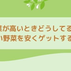 まだ使ってないの?【野菜が高い!】そんなときこそ宅配食材で野菜を安くゲットしよう!