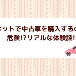 【体験談】中古車をネットで買うのは危険!?オンライン商談のみで購入した結果を詳しく解説!