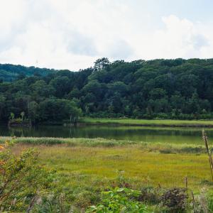 草紅葉が始まった十和田八幡平国立公園の八幡平大沼
