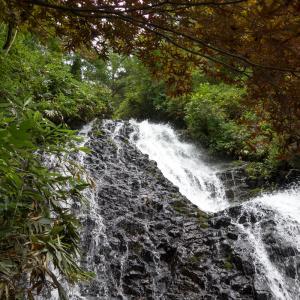 日本の滝百選である七滝や七滝神社もある道の駅こさか七滝