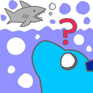 【水族館レポ】ヒゲツノザメ観てきた!