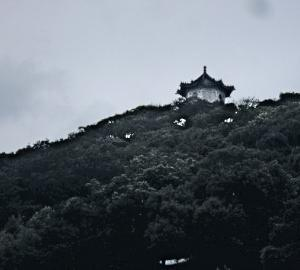 文湖線であなたの知らない見どころの観光とグルメ(碧山巖開漳聖王廟)