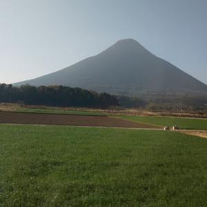 【鹿児島 指宿周辺】実際に行ったおすすめ観光スポット5つを紹介!
