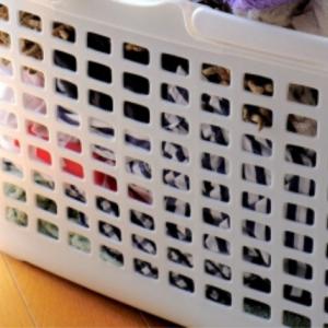 洗濯物の匂い対策に!メッシュタイプの洗濯カゴが必要な理由