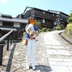 近場に旅行 こももちゃんと岐阜の東濃へ 2020年6月 ②