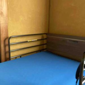 介護ベッドとこももちゃんの病気