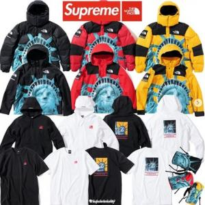 "Supreme 2019FW Week10 Supreme×The North Face ""Statue of Liberty""‬"