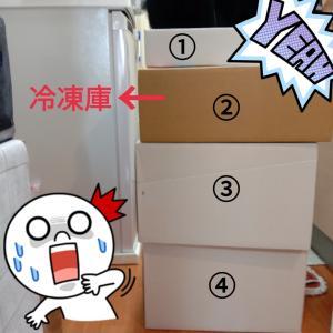 【結果発表✨】体重5キロ、体脂肪4キロと○○ゲット!!