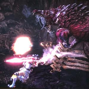 【MHW】1006 狂気の沙汰 歴戦オドガロン12頭狩り