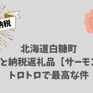 北海道白糠町ふるさと納税返礼品【サーモン1㎏】トロトロで最高な件